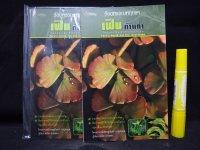タイのシダ類ポケット図鑑