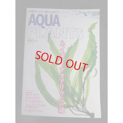 画像1: AQUA PLANTS(アクアプランツ) No.13 2016年